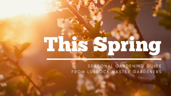 Spring Gardening Guide