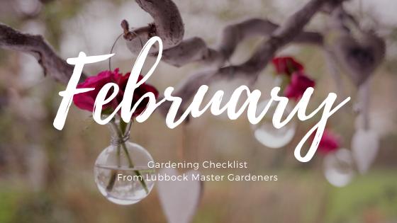 february gardening checklist